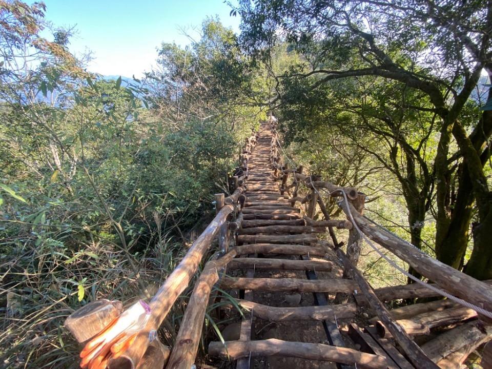 大坑4號步道-相思木棧道損壞整建(施工後)。(記者白信東翻攝)