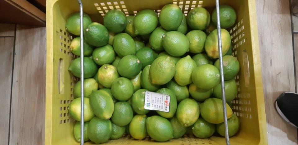 109年6月抽驗檸檬。(記者陳金泉翻攝)
