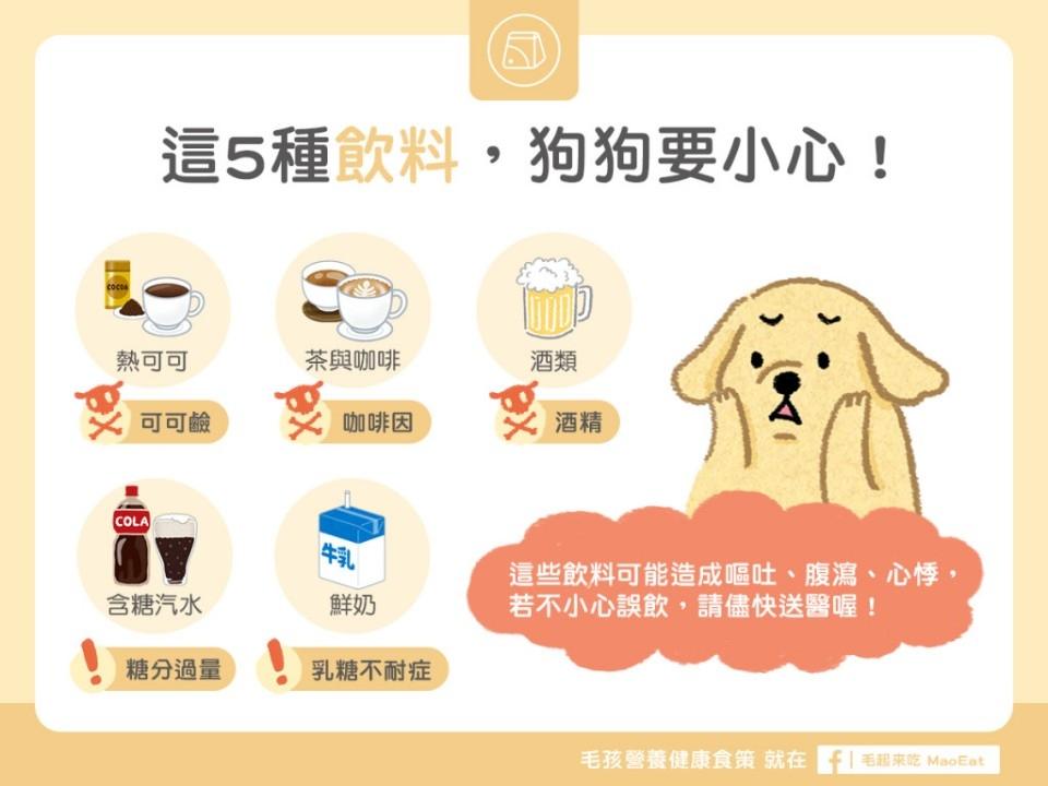 生活中的飲料過甜或含有咖啡因也都不適合毛寶貝。(圖片來源臉書+毛起來MAOUP)