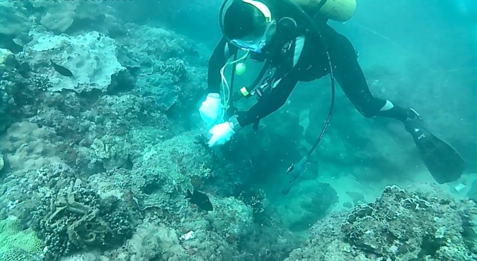 世界海洋日愛護海洋守護地球。(特約記者林有定翻攝).jpg